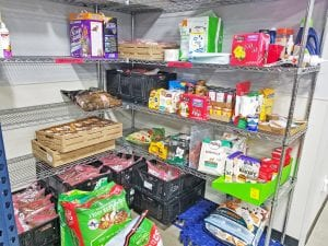 Pet Food at Amazing Grace Food Pantry
