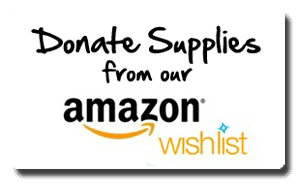Amazon Charity Wishlist